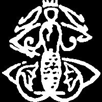 Trésors de St Barth
